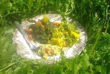 Wild Food/Villi Ruoka