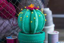 Cactus fever