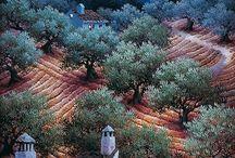 Luis Romero... Spanish Spray Painting