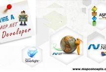Hire Asp Dotnet Developer