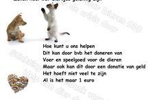 Svbvd010 / www.svbvd010.nl