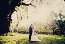 Wedding / by Ashley Clark