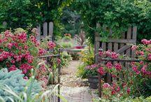 Garden Gates and Garden Paths / Garden gates, garden paths, DIY garden / by Sunny Simple Life - simple living everyday