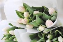 Lievelingsbloemen