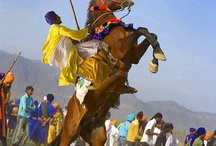 Sikh Horses / Pictures of Sikh horse riders and more