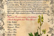 Herbs, Oils, etc