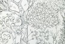 titkos kert szinezo