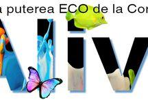 Eco for home / Produse pentru uz casnic