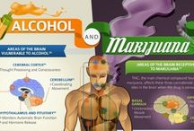 Drugs n stuff / Drug and alcohol fact