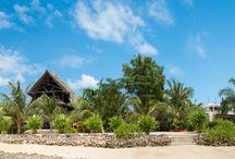Panoramic view of Milele Villas Zanzibar / Panoramic view of our two villas Lisa & Tatu from the ocean.