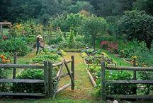 Tuinliefde
