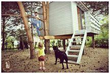 domek na drzewie treehouse