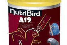 Buy Versele Laga Nutribird A19 800g / Buy #Versele_Laga_Nutribird_A19_800g Online at Low Price in India on #4petneeds