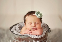 Newborn photography  / by Maria Brown