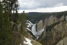 Yellowstone National Park Summer Tours