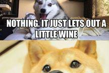 husky pun memes