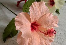 kvetinka 3