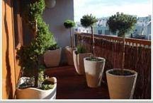 garden,balkon
