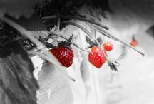 Fruits Boom / Ready Destroy