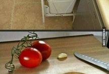House interior idea
