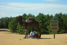 Vacation | Maine / Fun things to do in Maine