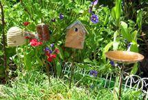 Where fairies dance... / Fairy Gardens / by Cassie Brumbaugh