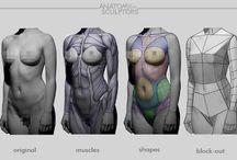 여자 근육