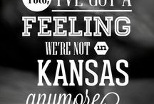 Movie Quotes / Quotes from movies