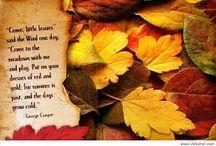 Autumn Leaves / My favorite season / by Sue Tasker