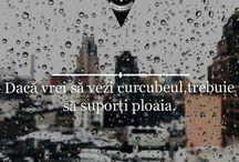 citate =(