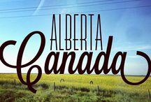 Hurtin' Albertan / by Jennifer Durell