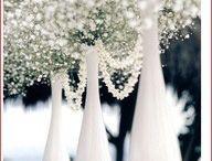 Wedding IDEAS / by Paula Jones