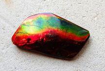 アンモナイト・アンモライト -Ammonite Ammolite