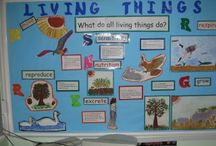 Science / Science Experiments, activities and Tpt items mostly for k-1 / by Kerri Buckner