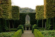 Topiary / Clipped loveliness!