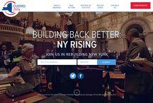 Political webdesign