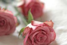 Szülinap, virág