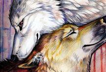 Ulve! ♥️