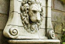 cara de leon