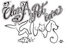 """Class A Pet Care / Committed vegan and lifetime pet owner offers pet sitting and dog walking services. I live in Chiswick (London). Visit my facebook page or instagram account (search """"Class A Pet Care"""") and/or whattsapp me on 07506 065891"""