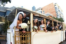 Wedding Transportation / A review of the types of transportation that are part of the wedding experience