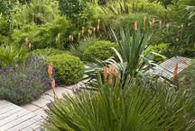 South African gardens