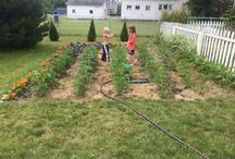 Gardening with Kids / Giving children the opportunity to garden provides so many benefits.