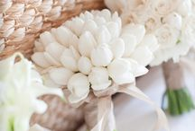 Color || Pearled Ivory
