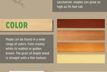 Species | Wood