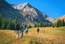 Get Outside / Take some time in nature. Take a walk, go camping, exercise outdoors, explore the woods (or your backyard)...just get out and enjoy the wonders of nature!