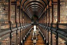 図書館 / 本のある部屋