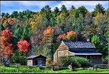 Great Smoky Mountains / by Bobbie Tharrington