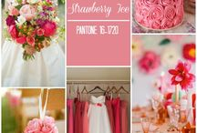Think Pink...for your wedding Day! / Different tones of Pink/Rose for your wedding ideas...