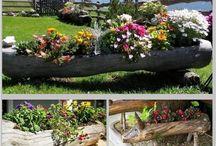 Ogród-dekoracje / DIY